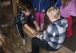 Elevene prøver seg på okshøvling i skytja på gullbakkgården