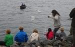 prøveseiling av båter